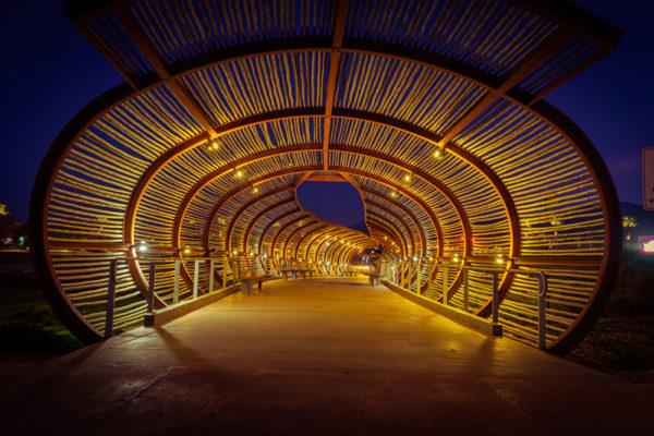bamboo-bridge2-sm