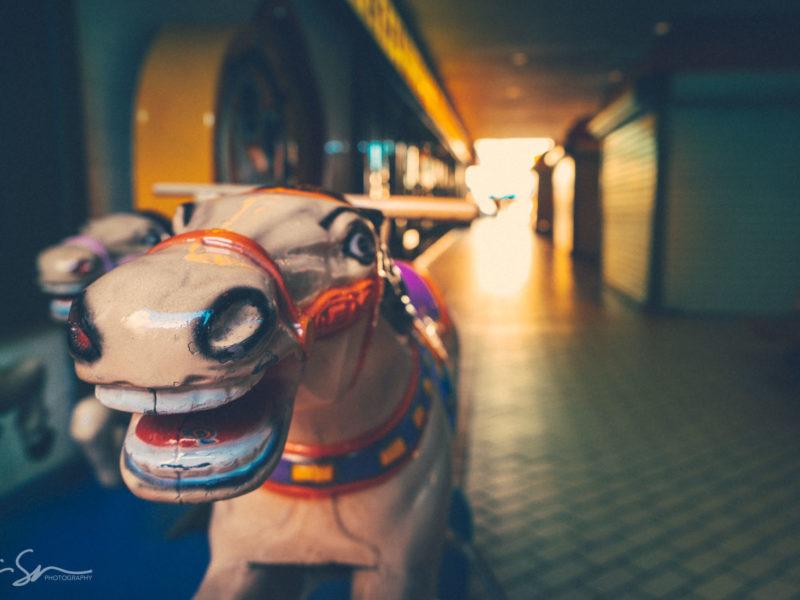 chinatown horse-sm