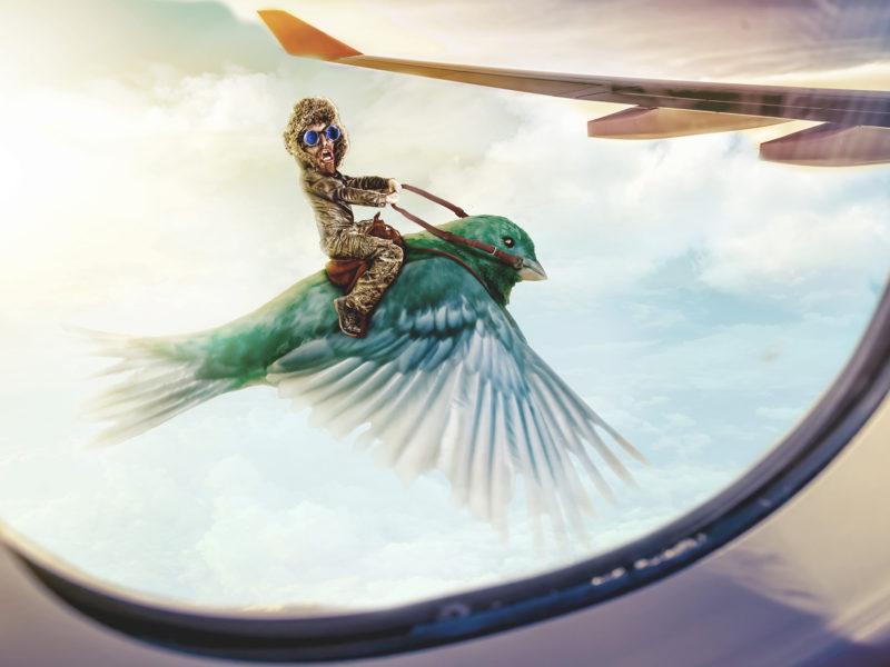 riding-bird-plane